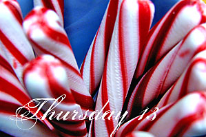T13-candy-canes