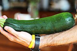 Zucchini and Yellow Squash Salad jillconyers.com #vegetarian #glutenfree #recipe